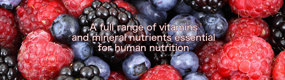 Multi Complex Multivitamin and Mineral Supplements